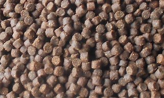 forel hex 4.5mm detail